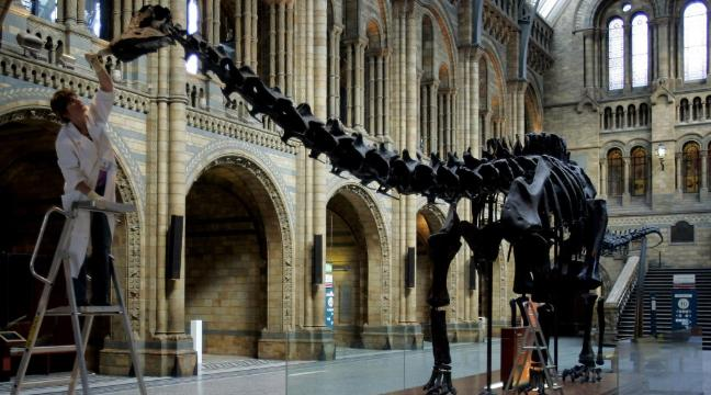 Photograph of the Natural History Museum in London